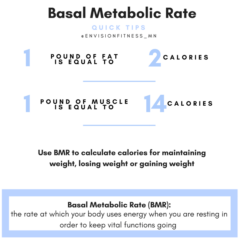 Basal Metabolic Rate: What is it and Why it's Important